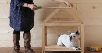 Diy archives bricolage blog - Comment savoir si on a des termites ...